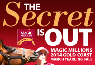 Magic Millions - GOLD COAST Catalogue